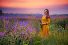 Mulher nova em um campo fotos de stock royalty free