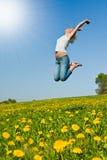 Mulher nova feliz no prado Fotografia de Stock