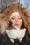 Mulher nova na madeira do inverno. Imagem de Stock