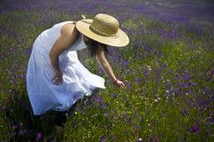Mulher nova nas flores brancas da colheita do vestido Imagem de Stock Royalty Free