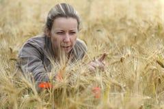 Mulher nova no campo de milho Imagem de Stock