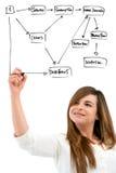 Mulher nova que cria o diagrama com a pena de marcador. Imagem de Stock