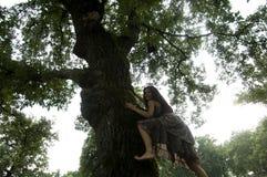 Mulher nova que escala uma árvore Imagens de Stock Royalty Free