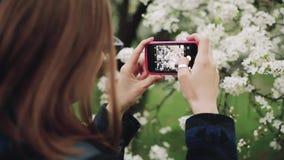 Mulher ocasional com um telefone em um jardim de florescência da mola Vista traseira filme