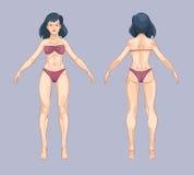 Mulher ou corpo fêmea no estilo dos desenhos animados Pose da posição da parte dianteira e da parte traseira Ilustração do vetor Fotografia de Stock