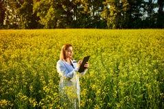 Mulher ou fazendeiro do agrônomo para examinar o campo de florescência do canola da violação usando a tabuleta foto de stock