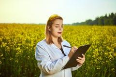 Mulher ou fazendeiro do agrônomo para examinar o campo de florescência do canola da violação usando a tabuleta imagens de stock royalty free
