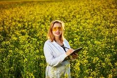 Mulher ou fazendeiro do agrônomo para examinar o campo de florescência do canola da violação usando a tabuleta imagem de stock