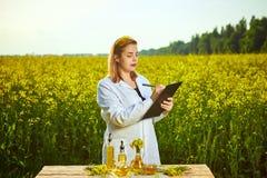 A mulher ou o fazendeiro do agrônomo examinam o óleo de colza usando a tabuleta no fundo do campo de florescência do canola da vi fotos de stock royalty free