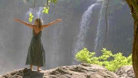 Mulher pela cachoeira vídeos de arquivo