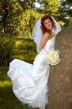 Mulher perto da árvore 3 Fotos de Stock Royalty Free