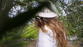 Mulher perto da ?rvore e do campo de plantas de videira filme
