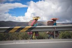 Mulher peruana imagens de stock