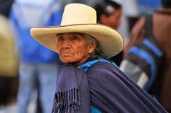 Mulher peruana nos andes do norte imagem de stock
