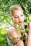 Mulher por flores na árvore Fotografia de Stock Royalty Free