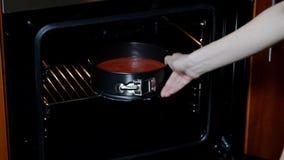 Mulher posta no bolo vermelho de veludo do forno vídeos de arquivo