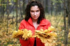 A mulher prende as folhas de outono Fotos de Stock Royalty Free