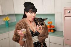 A mulher prende uma chihuahua Imagens de Stock