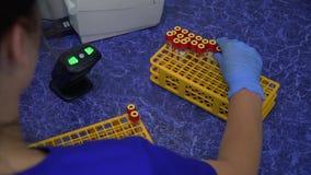 Mulher profissional segura no uniforme azul e nas luvas de borracha que põem a cremalheira para os tubos de ensaio no refrigerado filme