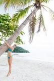 Mulher que abraça a palmeira Imagem de Stock