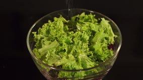 Mulher que adiciona o sal à salada vegetal, close-up video estoque