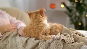 Mulher que afaga o gato de gato malhado vermelho na cama em casa filme
