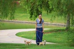Mulher que anda com cães Fotografia de Stock Royalty Free