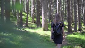 Mulher que anda na floresta vídeos de arquivo