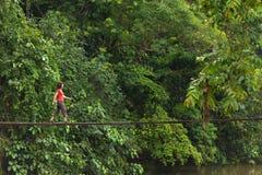 Mulher que anda na ponte de madeira Fotos de Stock Royalty Free