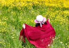 Mulher que anda no campo com flores Fotos de Stock Royalty Free