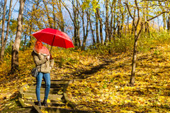 Mulher que anda no parque com guarda-chuva Fotografia de Stock Royalty Free