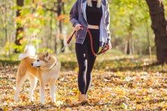 Mulher que anda no parque com seu cão foto de stock
