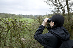 Mulher que birdwatching imagens de stock