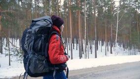 Mulher que caminha com uma trouxa no tiro bonito de Steadicam da floresta do inverno filme