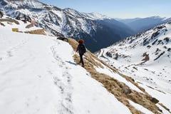 Mulher que caminha nas montanhas Fotos de Stock Royalty Free
