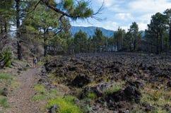Mulher que caminha no La Palma, Ilhas Canárias, Espanha Foto de Stock Royalty Free