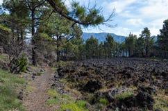 Mulher que caminha no La Palma, Ilhas Canárias, Espanha Fotos de Stock Royalty Free