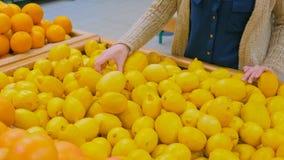 Mulher que compra limões amarelos frescos na mercearia foto de stock