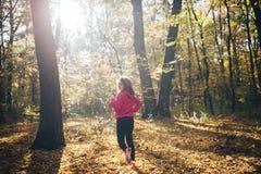 Mulher que corre durante a floresta da manhã do outono Imagem de Stock