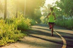 Mulher que corre na fuga tropical da floresta da manhã Fotografia de Stock Royalty Free