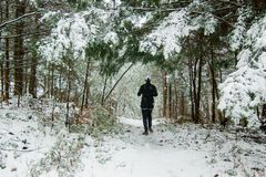 Mulher que corre na neve Fotos de Stock