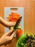 Mulher que cozinha a salada, as mãos humanas que desbastam o vegetal, o vegetariano, a cenoura, o pepino e a alface do coral verm fotos de stock royalty free