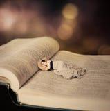 Mulher que dorme na Bíblia. imagem de stock royalty free