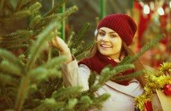 Mulher que escolhe a árvore do ` s do ano novo na feira Fotos de Stock