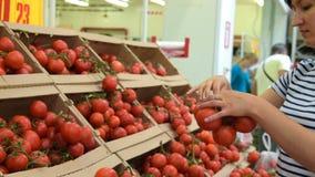 Mulher que escolhe tomates da videira no mantimento filme