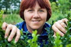 Mulher que espreita através das folhas verdes Foto de Stock Royalty Free