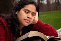 Mulher que estuda a Bíblia Foto de Stock Royalty Free