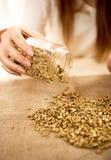 Mulher que esvazia o lingote com ouro na serapilheira Fotografia de Stock