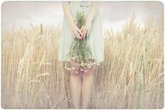 Mulher que guarda flores do marguerite fotografia de stock
