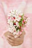Mulher que guarda flores frescas da mola Fotografia de Stock Royalty Free